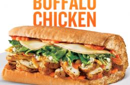 Buffalo Chix Promo Pic