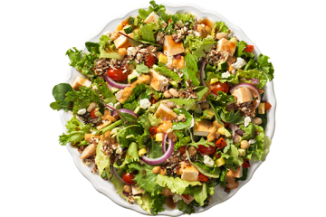 wendys power salad